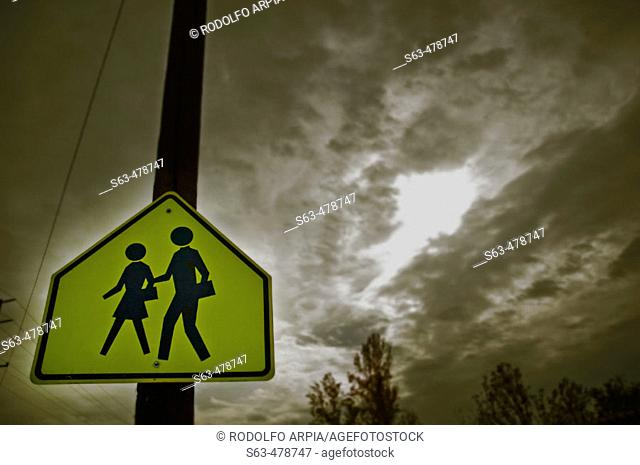 School crossing sign. Dark cloudy sky in background