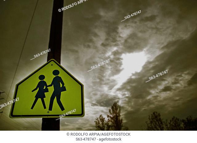 School crossing sign. Dark cloudy sky in background