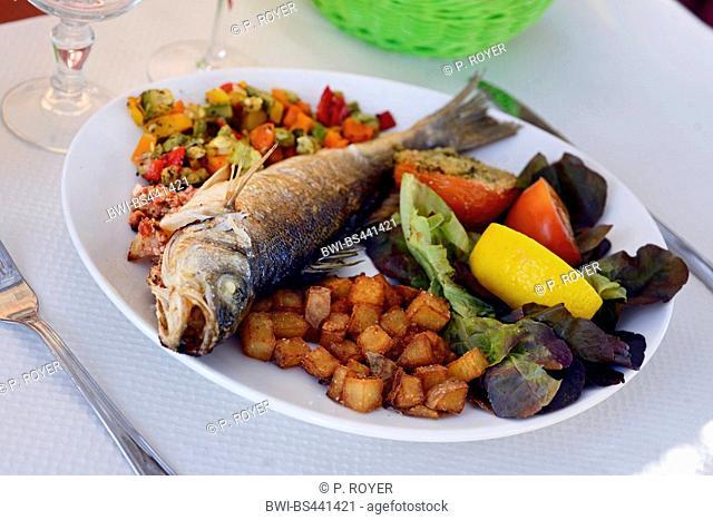 served seafood dishe, France, Corsica