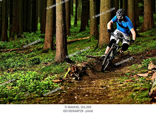 Male mountain biker riding through woods