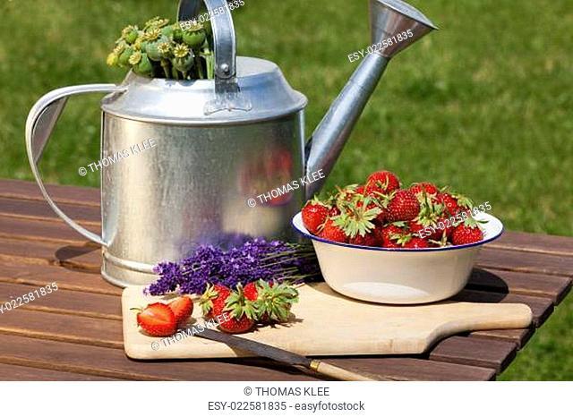 Erdbeeren, Lavendel und Mohnkapseln frisch geerntet