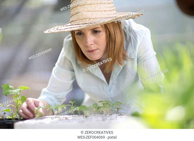 Portrait of female gardener looking at seedlings