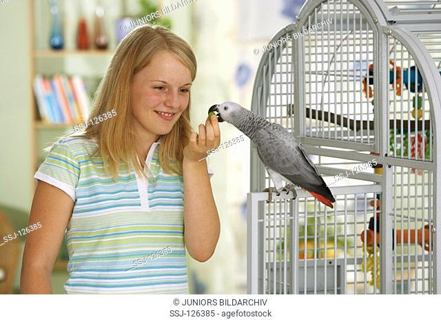 Congo African Grey parrot at cage - girl standing beside - Psittacus erithacus