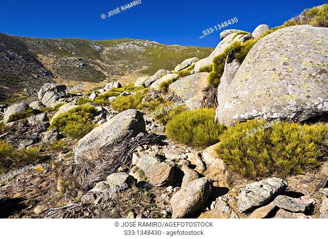 Sierra del Cabezo in the Sierra de Gredos  Ávila  Castilla León  Spain