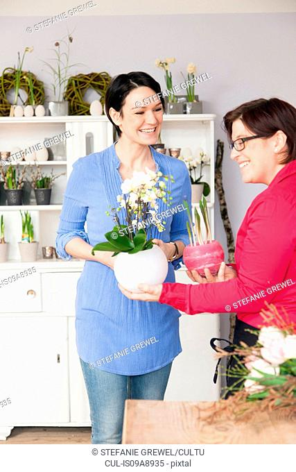 Mid adult woman choosing plant with florist
