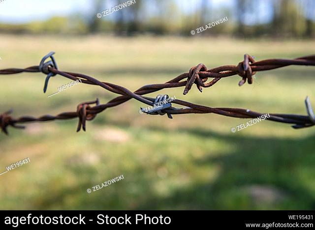 Barbed wire fence on a meadow in Jaczew village in Wegrow County, Poland