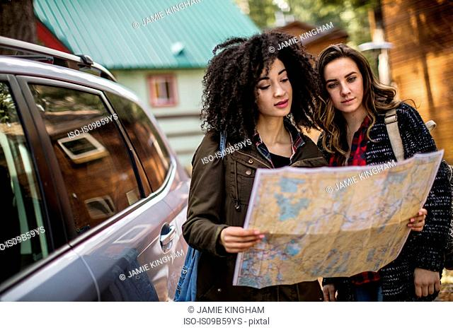 Two friends standing beside car, looking at map