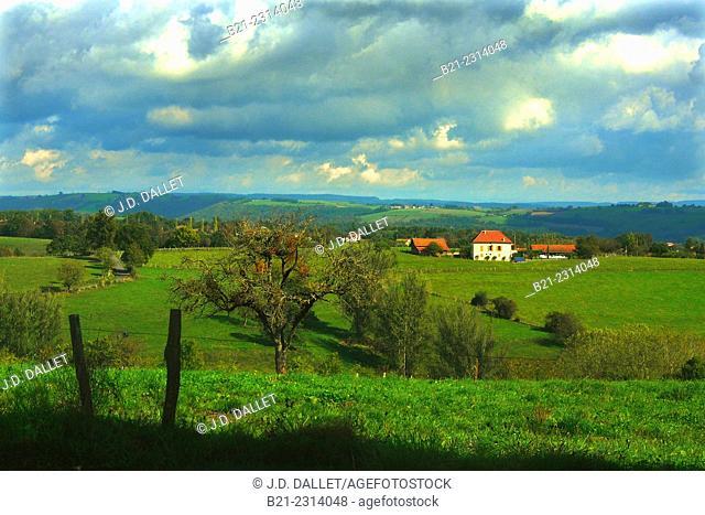 Landscape by Quezac, Cantal, Auvergne, France