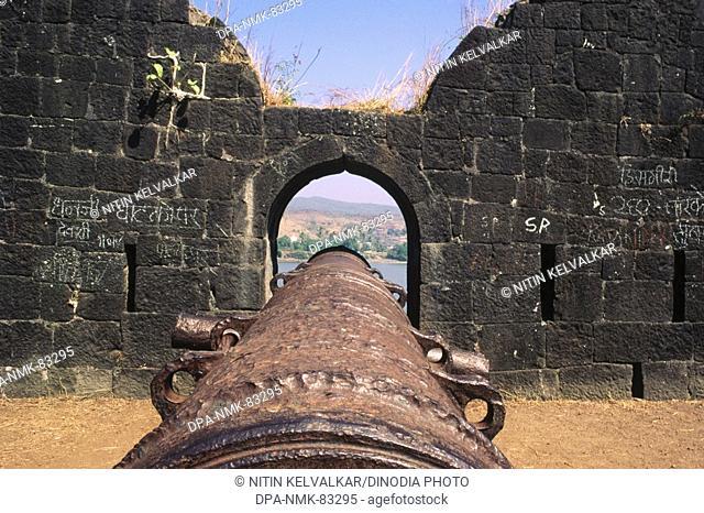 big cannon at janjira fort , murud , maharashtra , india