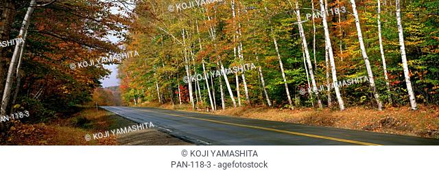Route 112, White Mountains National Park, New Hampshire, USA