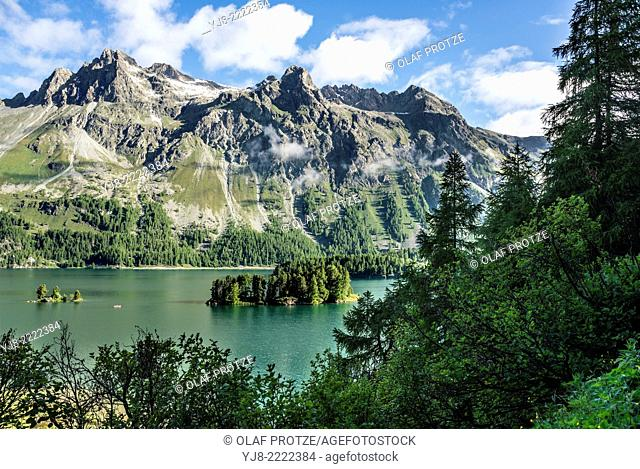 Summer landscape, Lake Sils, Upper Engadin, Switzerland