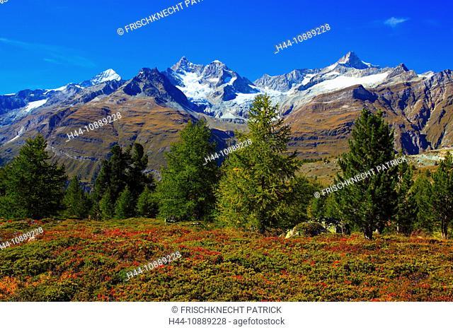 Alps, Alpine flora, Alpine panorama, view, Grünsee, view, mountains, mountain panorama, mountain lake, peak, Dent blanche, cliff, rock, flora, mountains, summit
