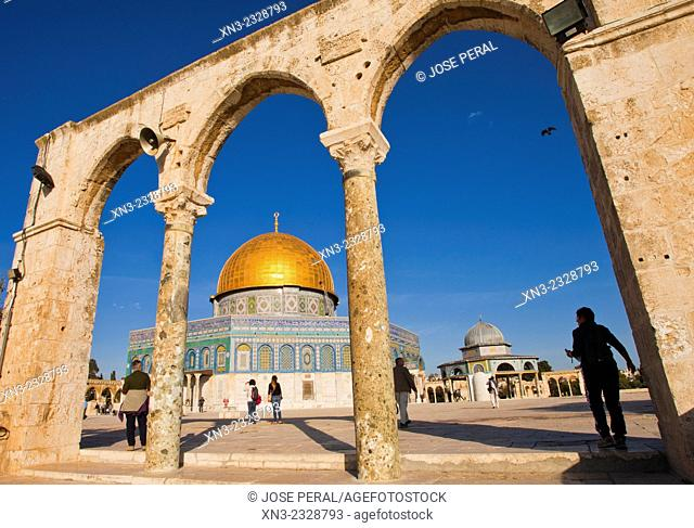 Tourist, Dome of the Rock, Temple Mount, Old City Jerusalem, Israel
