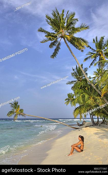 Palm trees on the beach, Filitheyo island, Maldives