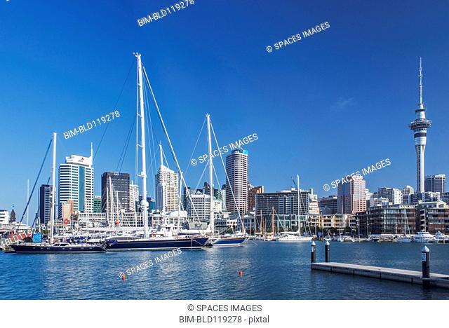 Auckland skyline and harbor, Auckland, New Zealand