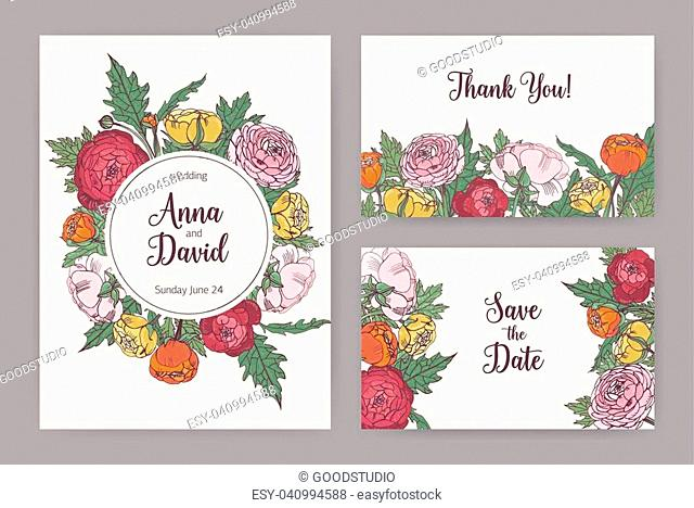 Collection of elegant wedding invitation, Save The Date card and Thank You note templates decorated with blooming pink, orange and yellow ranunculus flowers and...
