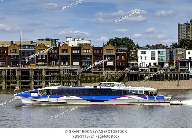 A Thames Clipper On The River Thames, London, England