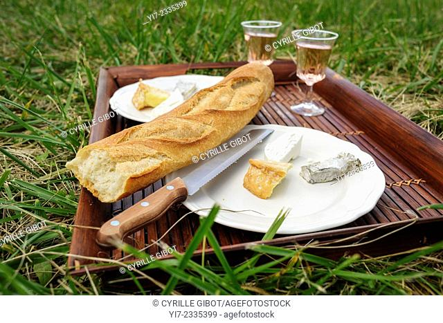 Picnic on the grass in France, bread, cheese and wine on wooden tray