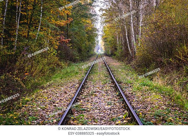 Railway tracks in so called Moose Muds natural preserve in Warsaw, Poland