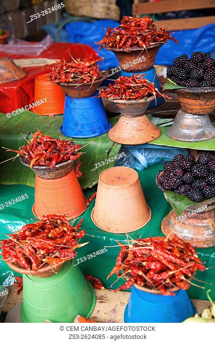 Red hot peppers and blackberries for sale at the fruit and vegetable market of San Cristobal de las Casas, Chiapas State, Mexico, North America