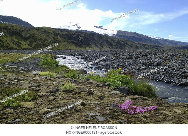Small stream in Thorsmork, Myrdalsjokull in the back