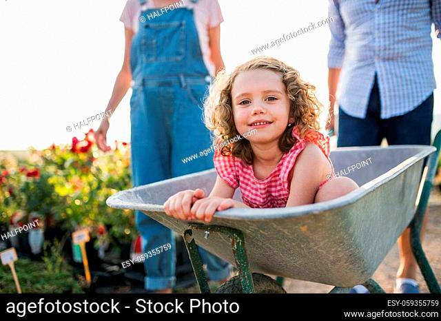 Midsection of senior grandparents pushing granddaughter in wheelbarrow when gardening in garden center