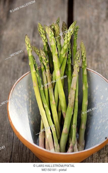 Green asparagus. Uncooked vegetables in a bowl. Fresh harvest of spring vegetable