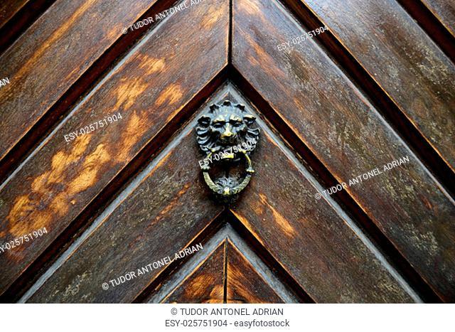 old wood door lion head metal handle