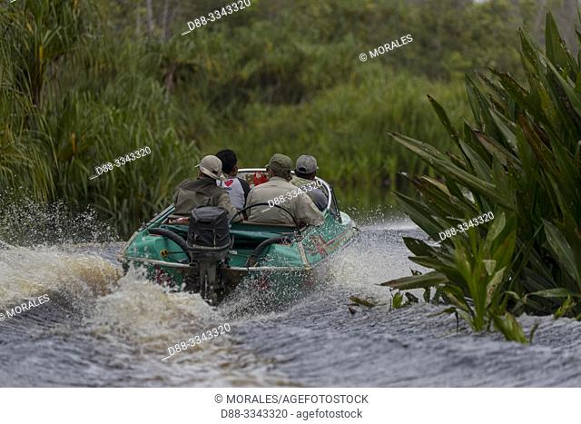Asia, Indonesia, Borneo, Tanjung Puting National Park, tourists in a speed boat on the Sekonyer river