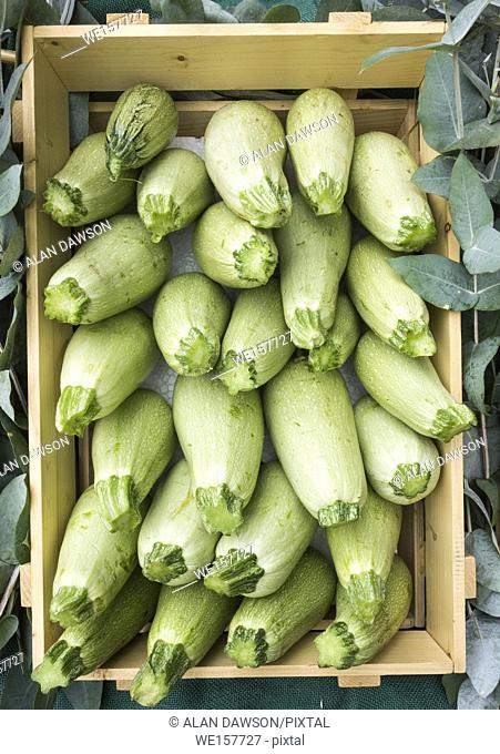 Box of courgettes on market stall on Gran Canaria, Canary Islands, Spain