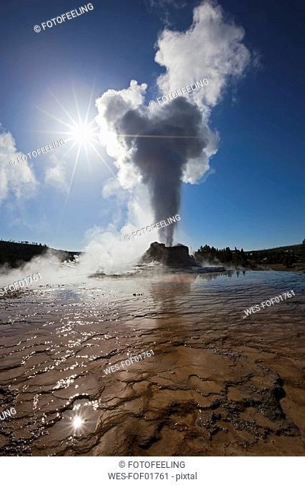 USA, Yellowstone Park, Wyoming, Castle Geyser
