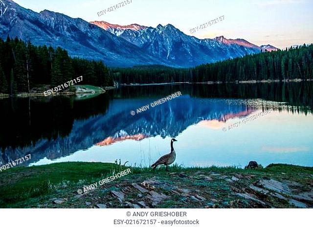 Beautiful BC, Amazing Alberta