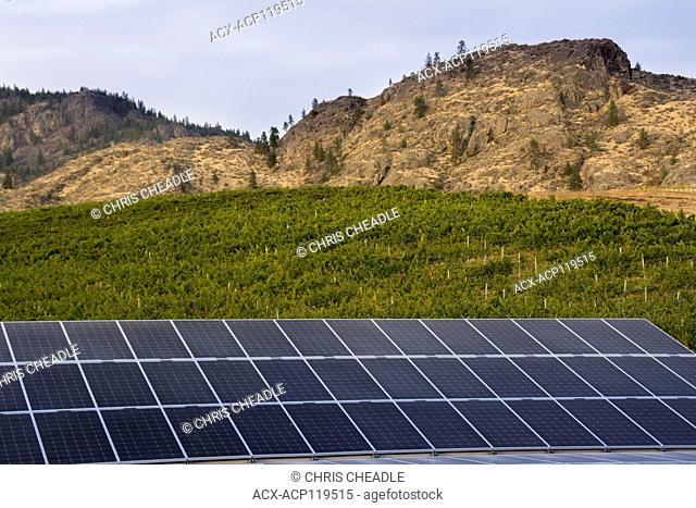 Solar Panels, Burrowing Owl Estate Winery, Oliver, Okanagan Valley, British Columbia, Canada