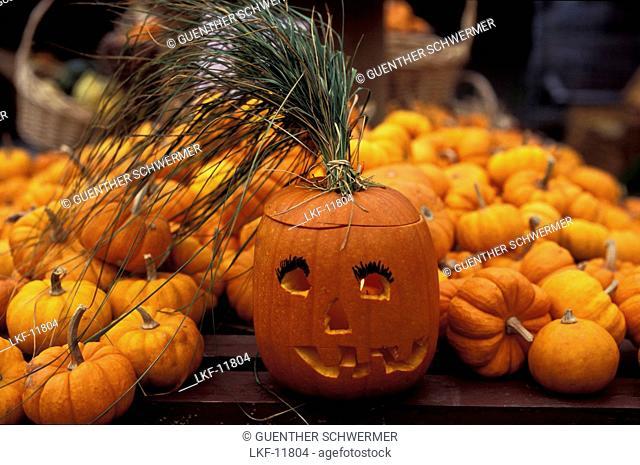 Jack O'Lantern, Pumpkin, Halloween, Quebec, Canada