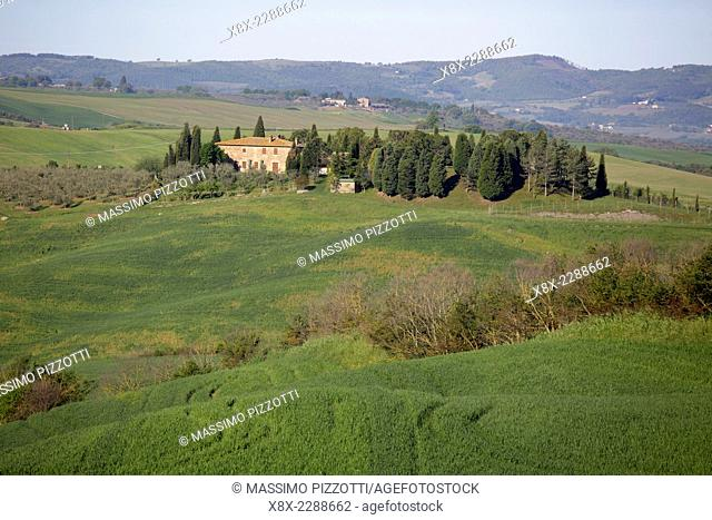 Landscape of Val d'Orcia, Tuscany, Italy