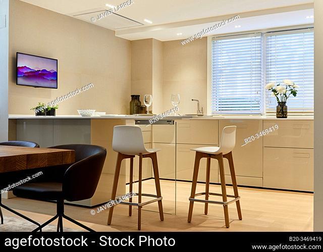 Kitchen, Family house, Villa, Donostia, San Sebastian, Gipuzkoa, Basque Country, Spain, Europe