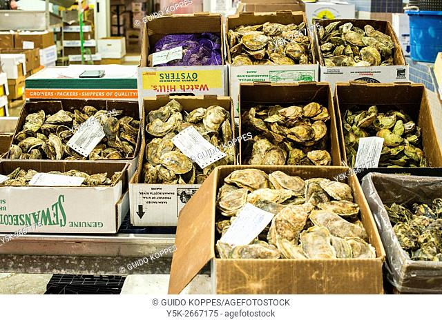 New York City, USA. Boxes of oisters and other seafood at the New Fulton Fish Market, Hunts Point, The Bronx