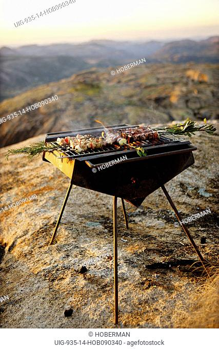 Lamb Kebabs on Barbeque