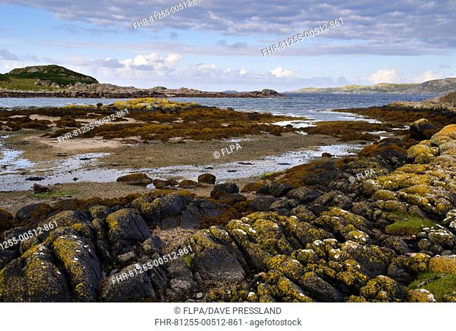View of rocky coastline, Strait of Iona, Fidden, Isle of Mull, Inner Hebrides, Scotland, August