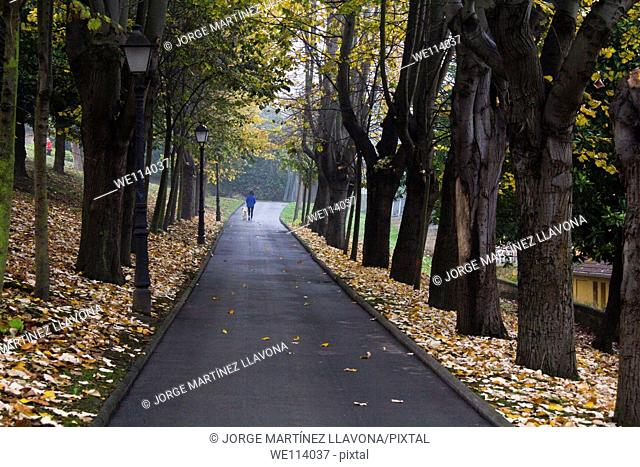 Woman walking with a dog in a park