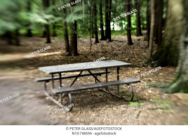 Picnic table at a park