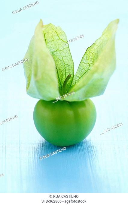 Tomatillo with turned back husk