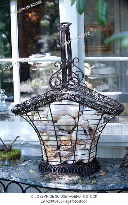 A garden vignette showing sea shells in a basket on a table outdoors.Georgia USA