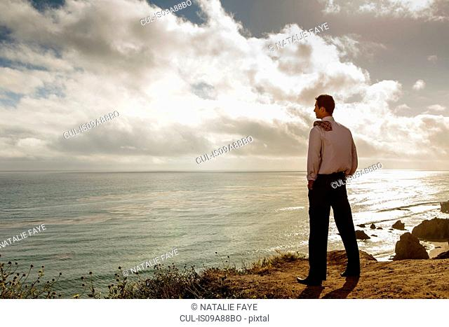 Businessman looking at sea, El Matador beach, California, USA