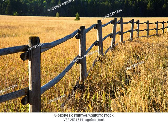 Meadow fence in Little Blackfoot River valley, Powell County, Montana