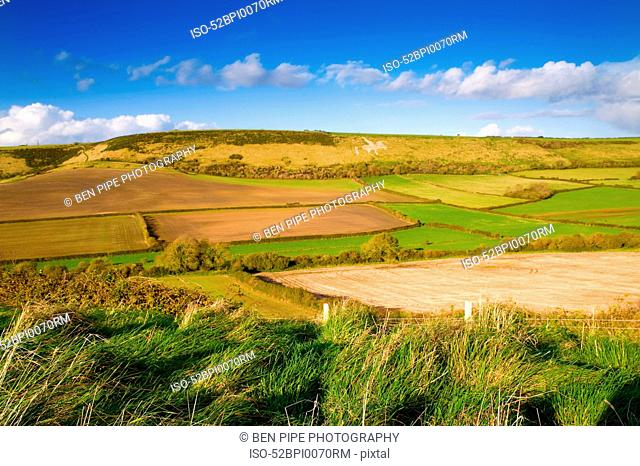 Fields in rural landscape