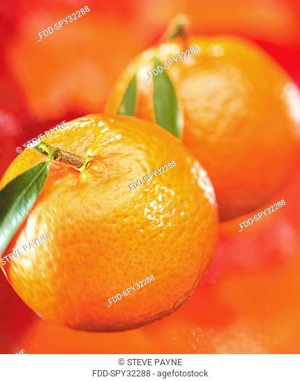 Mandarins on Orange Background