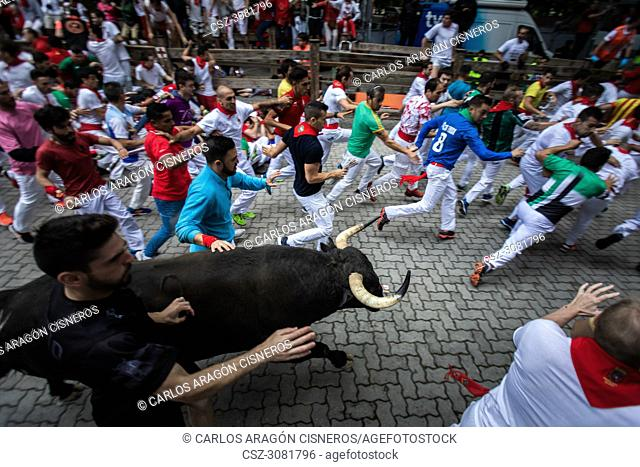 PAMPLONA, SPAIN - JULY 13, 2018: Bulls and people running on the street, encierro, during the festival of San Fermin. Bulls of the cattle ranch of Jandilla