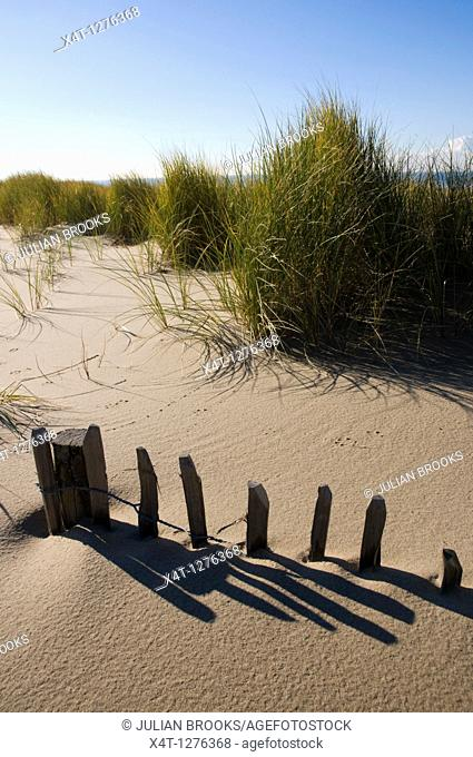A collapsing fence on a sand dune, buried by sand