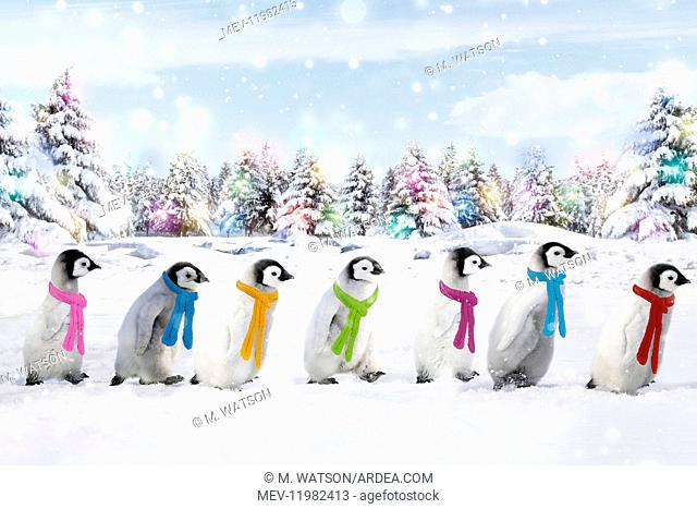 Emperor Penguins walking in line wearing scarves with Christmas lights